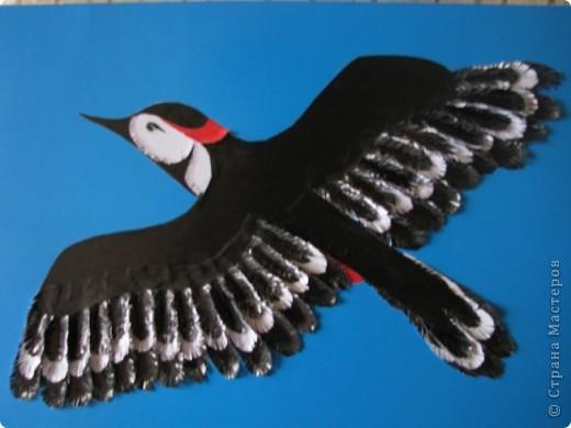 Это обложка для проекта о птице ребенку в школу
