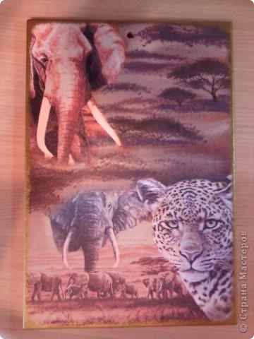 """Вот такой """"африканский"""" набор получился. После шкатулки как-то зацепила тема Африки, а тут ещё салфетки попались на глаза интересные. фото 2"""