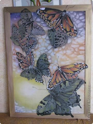 Бабочки )))))))) фото 2