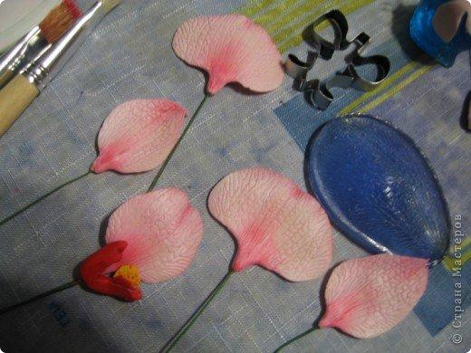 Мастер-класс Лепка МК орхидея Фаленопсис Фарфор холодный фото 22