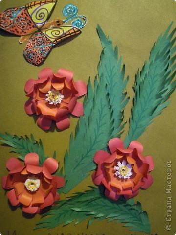 Чтобы и в душе цвели цветы и летали бабочки! фото 1