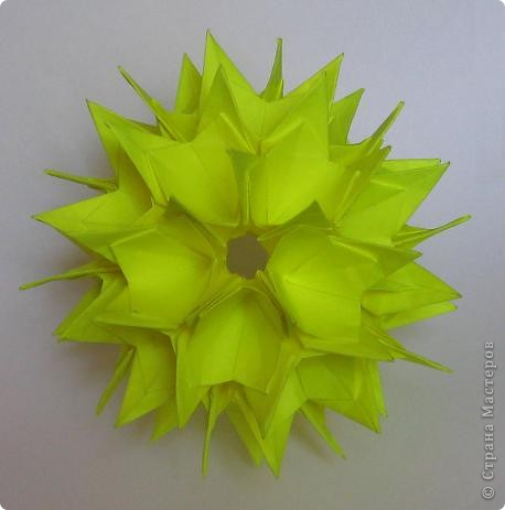 Primula curled, автор: Ирина Реутская фото 3