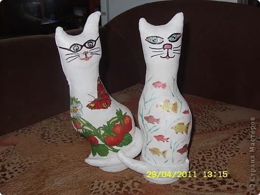 """Кошка в очках заглядывает """"а рыбкой поделишься?"""" фото 1"""