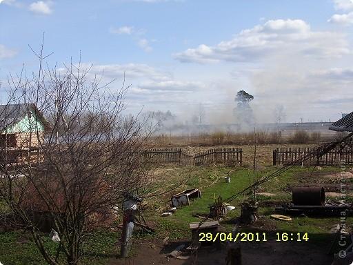 """Каждый год """"умные""""люди поджигают сухую траву на поле... фото 6"""
