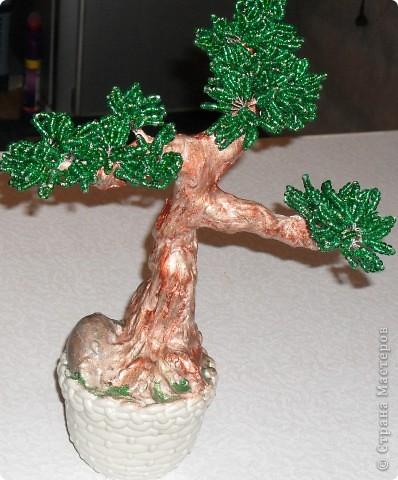 Такое мощное дерево у меня получилось! фото 2