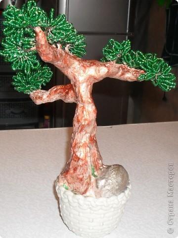 Такое мощное дерево у меня получилось! фото 3