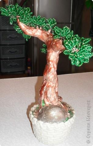 Такое мощное дерево у меня получилось! фото 4