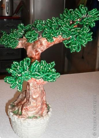 Такое мощное дерево у меня получилось! фото 5