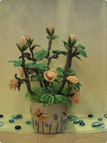 Поделка изделие Бисероплетение Кустовая роза Бисер фото 2.