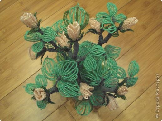 Поделка изделие Бисероплетение Кустовая роза Бисер фото 3.