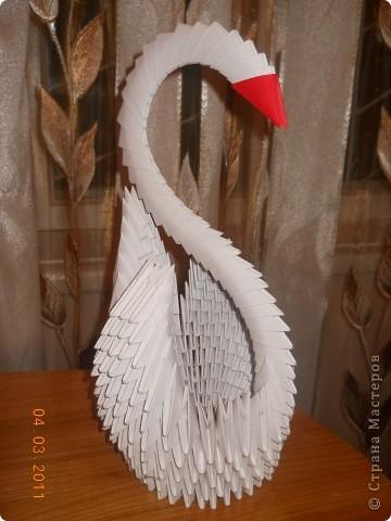 Лебедь)