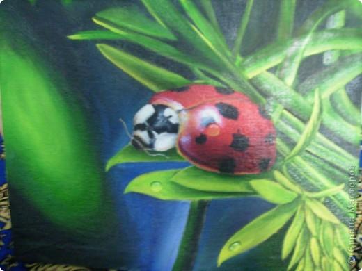 Эти картины рисовала моя дочь Дарина. фото 7
