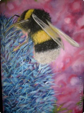 Эти картины рисовала моя дочь Дарина. фото 4