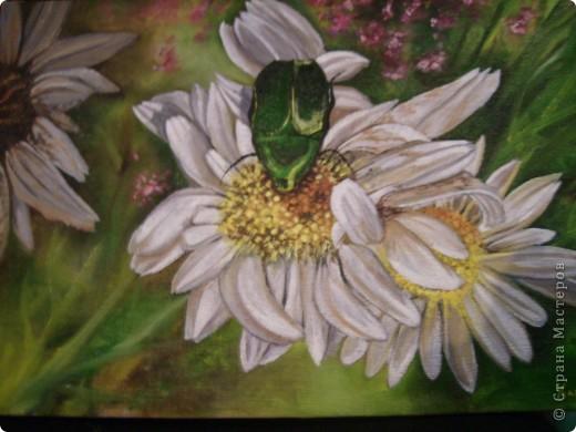 Эти картины рисовала моя дочь Дарина. фото 5