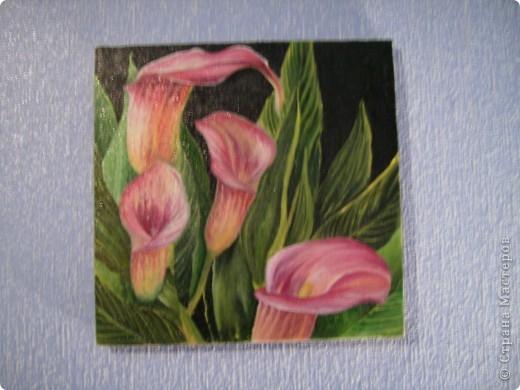 Эти картины рисовала моя дочь Дарина. фото 6