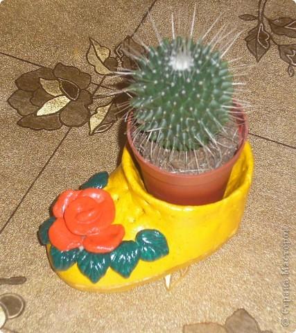 Башмак для кактусика фото 1