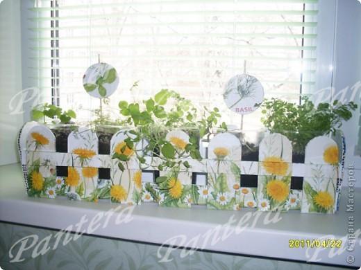 Посадила разные травки в пластиковые стаканчики: базилик, укроп ,петрушку, мелиссу.На окне стаканы смотрятся не очень.Поэтому решила их спрятать за таким заборчиком! Идея из интернета,думаю,многие видели. Сделала конечно все по-своему.  фото 1