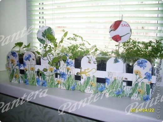 Посадила разные травки в пластиковые стаканчики: базилик, укроп ,петрушку, мелиссу.На окне стаканы смотрятся не очень.Поэтому решила их спрятать за таким заборчиком! Идея из интернета,думаю,многие видели. Сделала конечно все по-своему.  фото 3