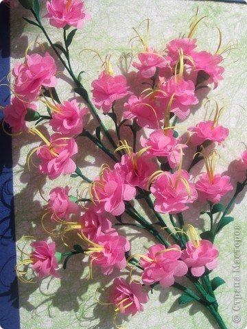 Дорогие Мастерицы,я занялась селекцией!У меня получилось что-то между японской сакурой и нашим багульником ( У нас его еще называют моральником). Так как цветы эти все-таки фантазийные, то и название я им дала соответствующее.  фото 5