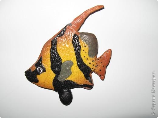 Рыбка на холодильник