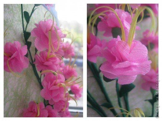 Дорогие Мастерицы,я занялась селекцией!У меня получилось что-то между японской сакурой и нашим багульником ( У нас его еще называют моральником). Так как цветы эти все-таки фантазийные, то и название я им дала соответствующее.  фото 4