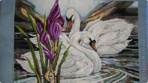 Ангелочки фото 9