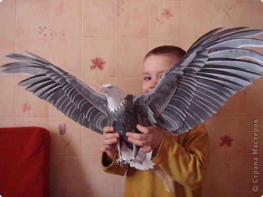орел http://www.planetapodelok.ru/?p=1118 тут схема этого орла прошу прощение у меня что-то не хочет давать писать ответы на ваши вопросы так что ссылки тут будут http://www.canon.com/c-park/ фото 1
