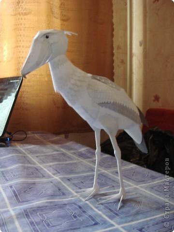 орел http://www.planetapodelok.ru/?p=1118 тут схема этого орла прошу прощение у меня что-то не хочет давать писать ответы на ваши вопросы так что ссылки тут будут http://www.canon.com/c-park/ фото 4