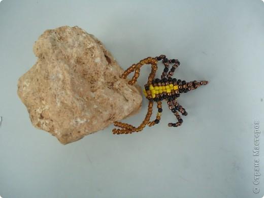 Скорпион фото 4