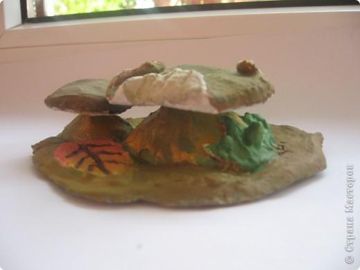 мои грибочки назвали вулканом... фото 2