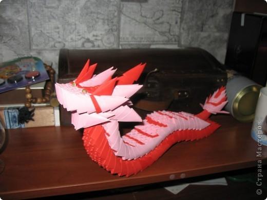 Морской дракон фото 2