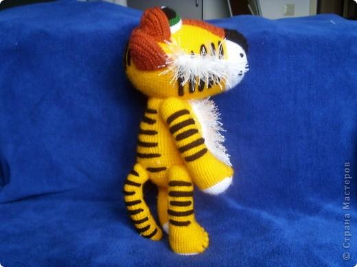 Благодаря AYUVL на свет появился вот такой тигрик, очень милый и добрый. фото 5