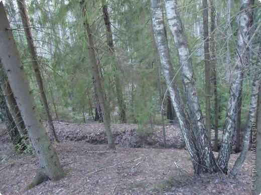 В Смоленской области на территории удивительно красивого национального парка Смоленское поозерье существует огромное количество памятных мест, связанных с героизмом советских  солдат и партизан. В одном из таких мест я и предлагаю вам сегодня побывать. фото 12
