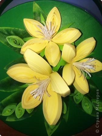 Цветочки неизвестные))) Делала подарок для племянницы  фото 1