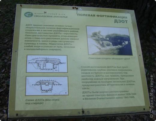 В Смоленской области на территории удивительно красивого национального парка Смоленское поозерье существует огромное количество памятных мест, связанных с героизмом советских  солдат и партизан. В одном из таких мест я и предлагаю вам сегодня побывать. фото 5
