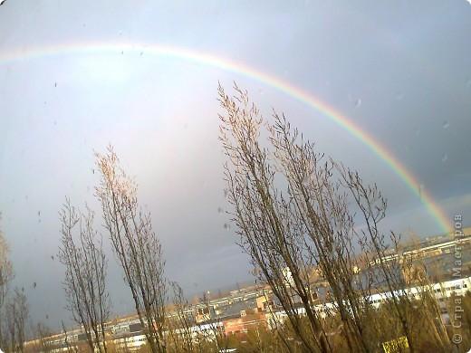 После дождя фото 8