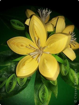 Цветочки неизвестные))) Делала подарок для племянницы  фото 2