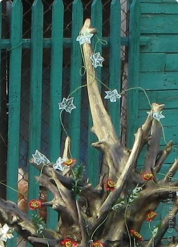"""Такой вьюнок """"живет"""" у меня в огороде.      http://stranamasterov.ru/node/187529     Я раньше уже рассказывала, как сделать маки, а сейчас решила поделиться своей идеей выполнения вьюнка, который можно поселить и в доме и в огороде, да и изготовить его не так сложно. фото 10"""