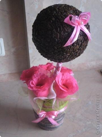 """Кофейное дерево """"Романтичное"""" фото 1"""
