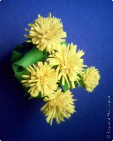весна нам дарит ... одуванчики))) фото 2