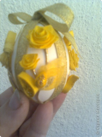 жълти рози фото 3
