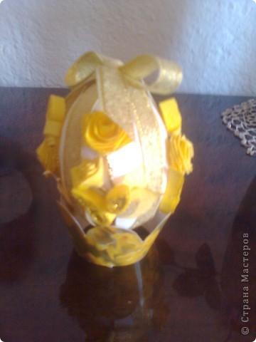 жълти рози фото 1