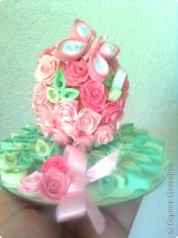 рози фото 1