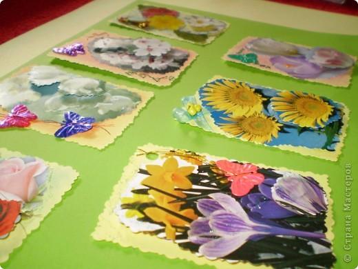 Девочки я так люблю цветы, и вот  решила такую серию  сделать, права первого выбора за: Vitulichka,   Ларисочка,   Улик и Лучик,  radik.  фото 2