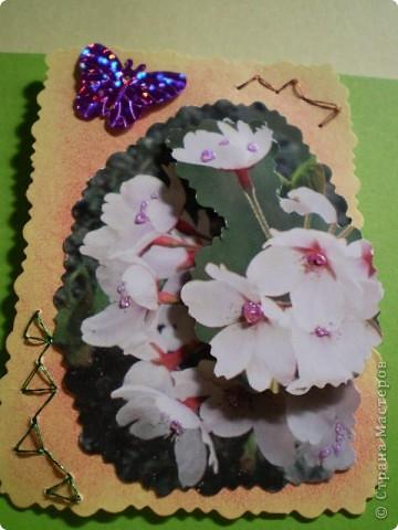 Девочки я так люблю цветы, и вот  решила такую серию  сделать, права первого выбора за: Vitulichka,   Ларисочка,   Улик и Лучик,  radik.  фото 7