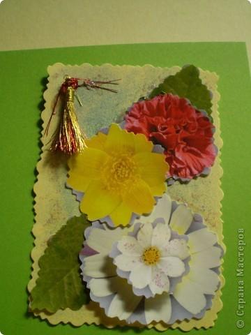 Девочки я так люблю цветы, и вот  решила такую серию  сделать, права первого выбора за: Vitulichka,   Ларисочка,   Улик и Лучик,  radik.  фото 9