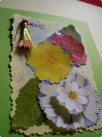 Девочки я так люблю цветы, и вот  решила такую серию  сделать, права первого выбора за: Vitulichka,   Ларисочка,   Улик и Лучик,  radik.  фото 10