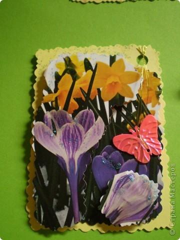 Девочки я так люблю цветы, и вот  решила такую серию  сделать, права первого выбора за: Vitulichka,   Ларисочка,   Улик и Лучик,  radik.  фото 11