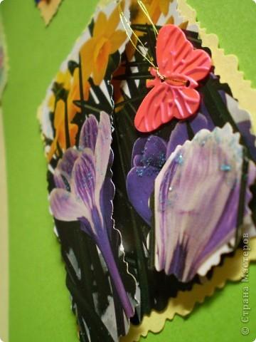 Девочки я так люблю цветы, и вот  решила такую серию  сделать, права первого выбора за: Vitulichka,   Ларисочка,   Улик и Лучик,  radik.  фото 12