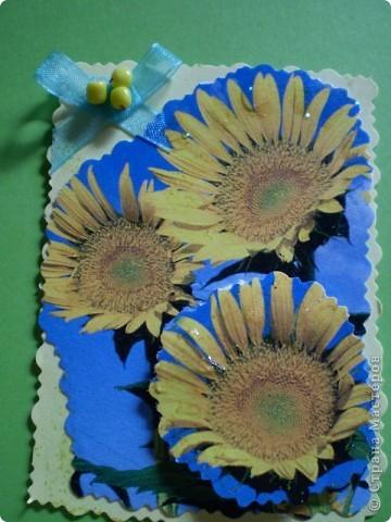 Девочки я так люблю цветы, и вот  решила такую серию  сделать, права первого выбора за: Vitulichka,   Ларисочка,   Улик и Лучик,  radik.  фото 13